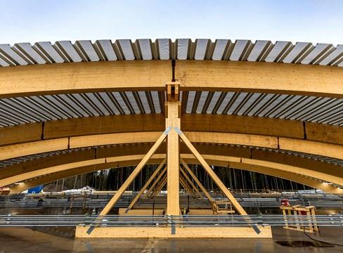 Sanna Arena