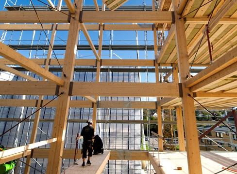Trä istället för tradition – att med kraft nå klimatmålen